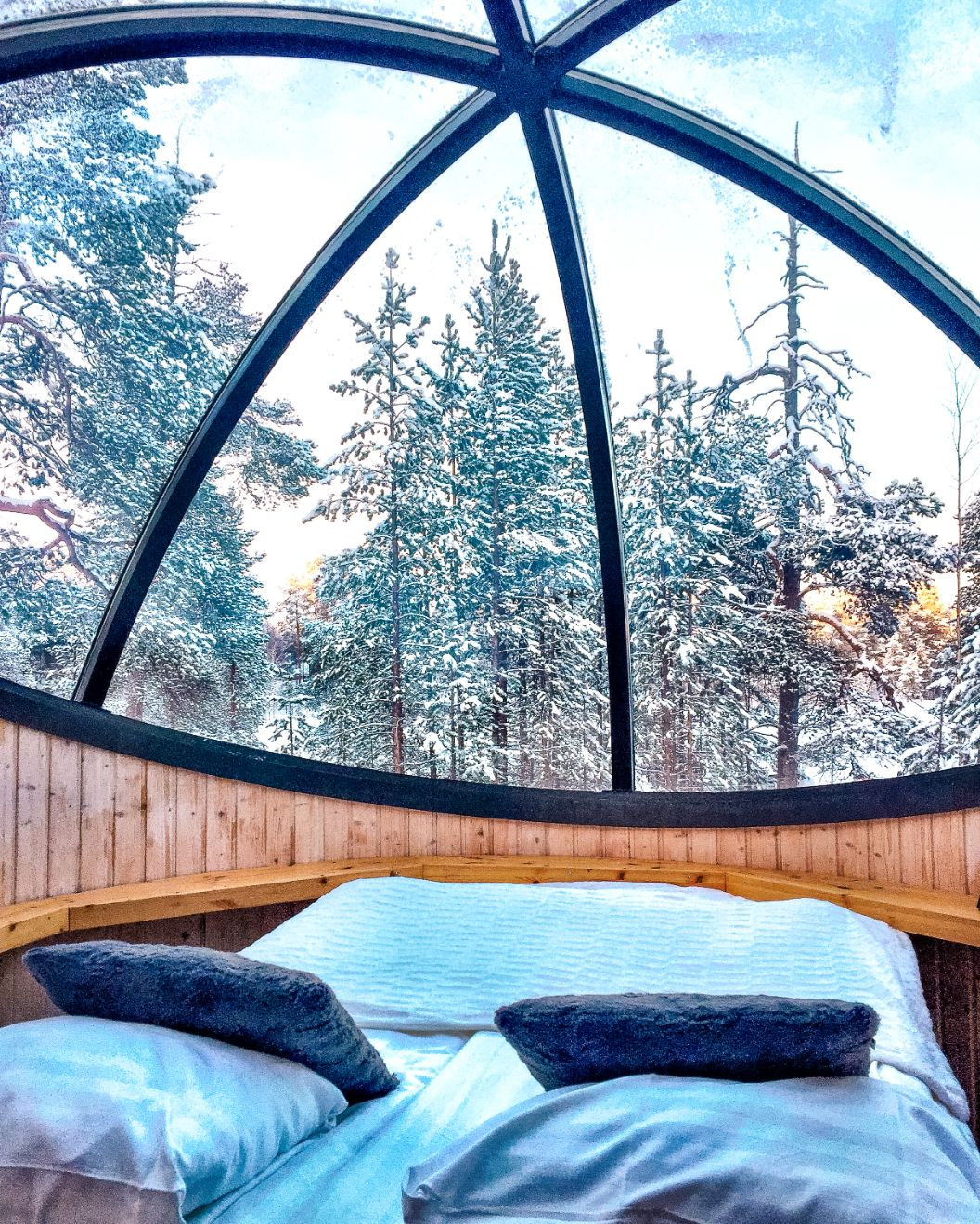 bed inside an aurora bubble with glass dome ceiling looking out at snow covered trees in Finnish Lapland