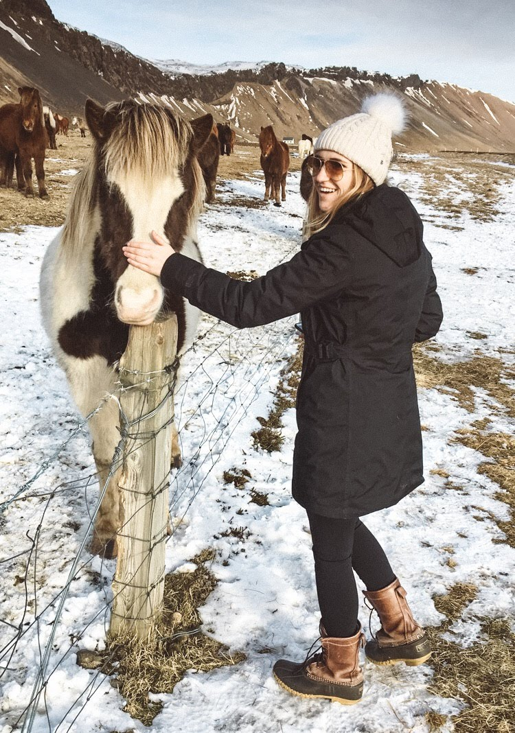 Hannah Corderman petting Icelandic horse on side of road in Iceland in winter during 24 hour Iceland itinerary