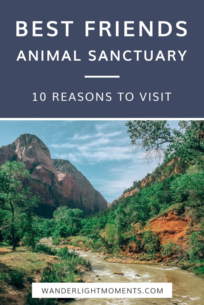 Pinterest graphic with image of Zion National Park river and mountains and header text that reads Best Friends Animal Sanctuary 10 Reasons to Visit