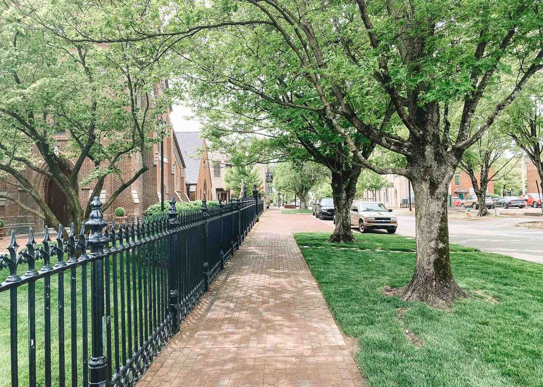 sidewalk in downtown Huntsville Alabama with a fence and brick buildings on the left and leaf-filled trees on the right